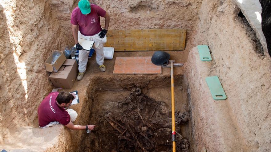 Imatge dels treballs d'exhumació de la Fossa 113 del cementeri de Paterna
