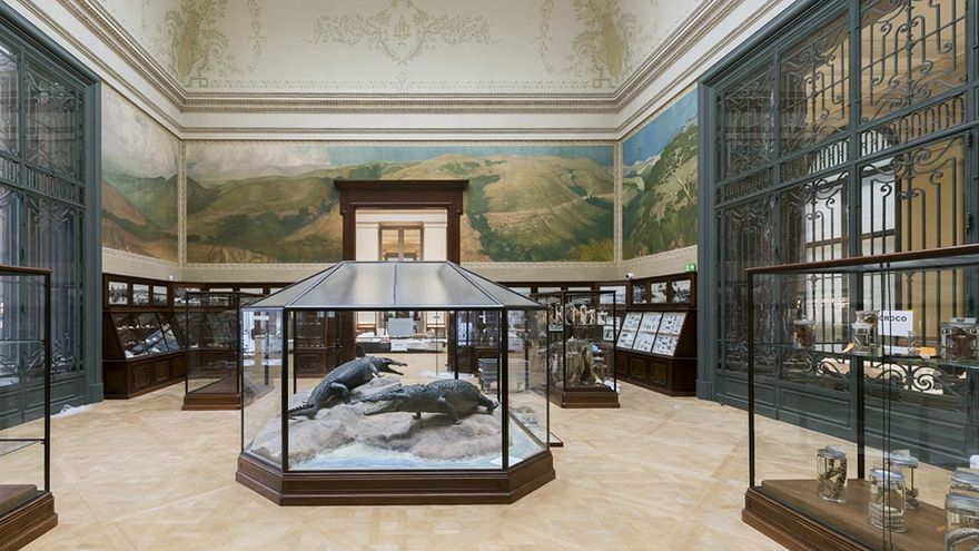 La sala del cocodrilo es la única que se ha mantenido intacta en el AfricaMuseum, en Bruselas.