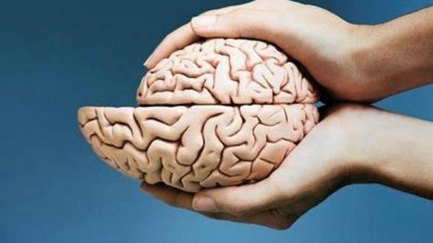 """Soy un cerebro, Watson. El resto de mí es solo un apéndice (Arthur Conan Doyle, """"La piedra de Mazarino"""")"""