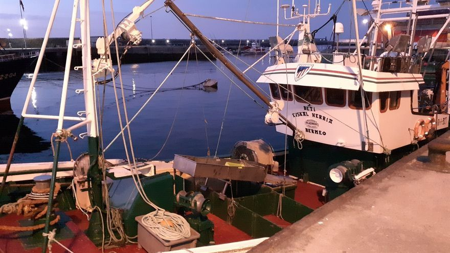La flota vasca estima unas capturas de cerca de un millón de kilos de bonito hasta la fecha