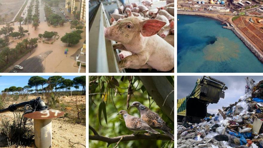 España encabezó el número de infracciones ambientales de la Unión Europea en 2019.