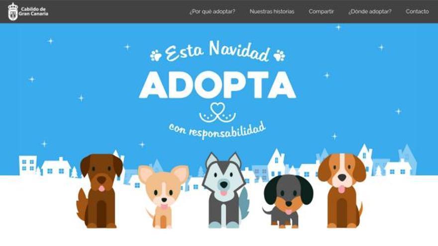 Campaña de adopción de animales del Cabildo de Gran Canaria
