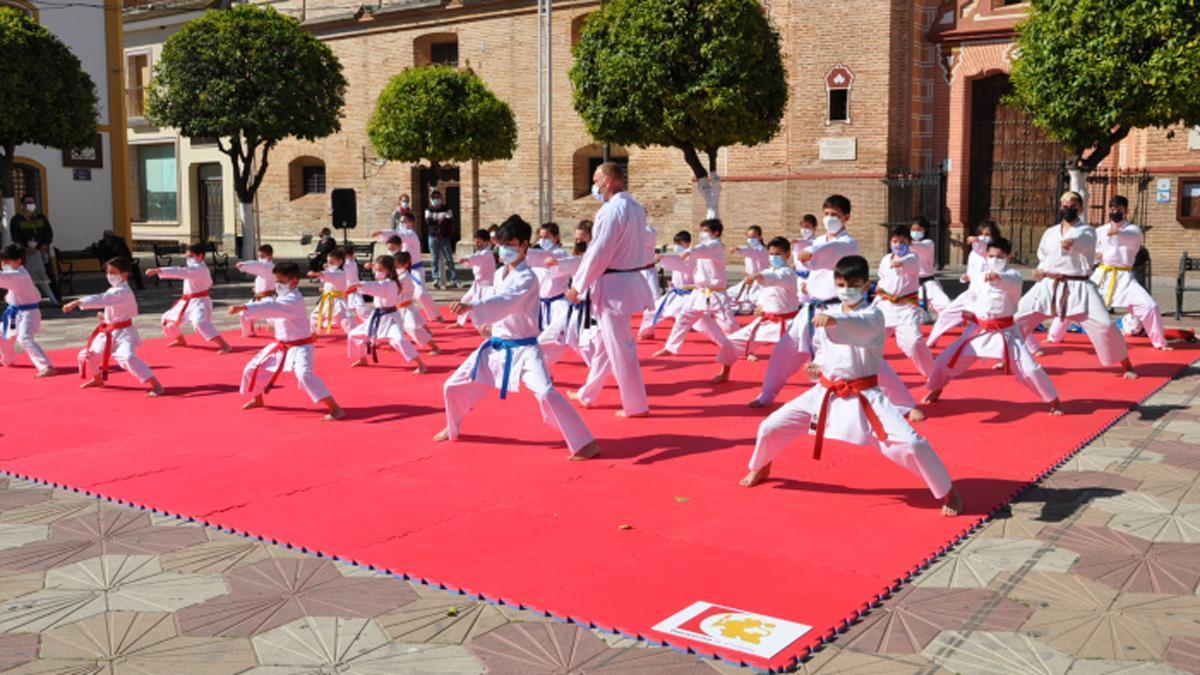 Exhibición de 'Conoce el karate' en Fuente Palmera.
