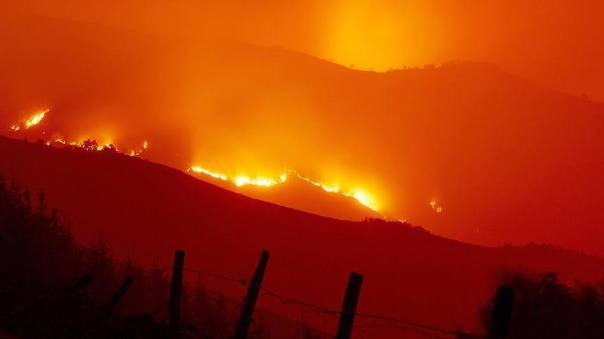 Cuarenta y dos incendios forestales en Galicia, ninguno con peligro real