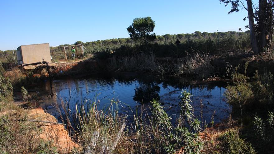 Balsa de riego sin permiso en Lucena del Puerto (Huelva) / R.R.
