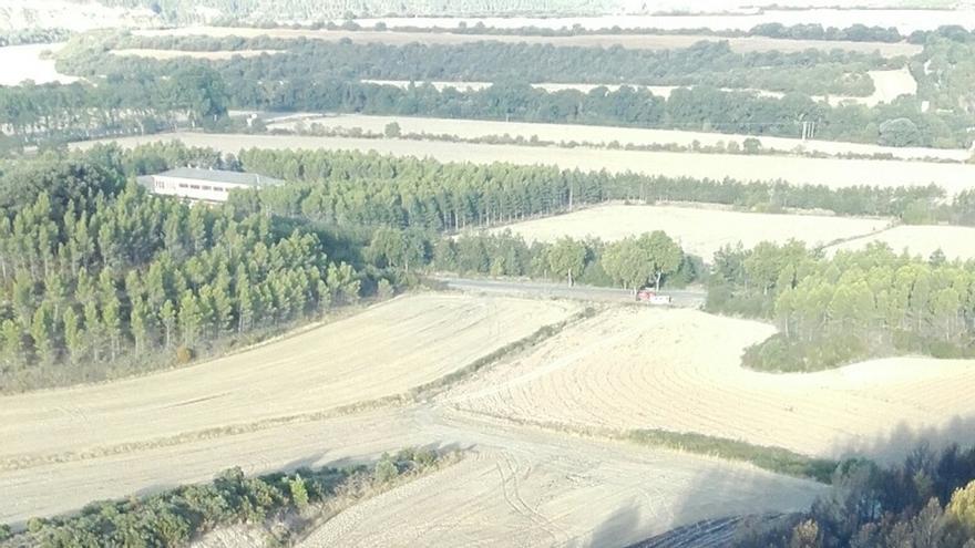 El incendio de Javier ha afectado a unas 10 hectáreas de terreno, fundamentalmente pino