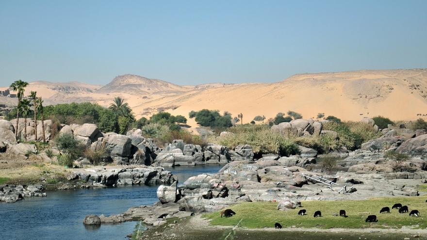 Las islas se amontonan en la Catarata de Aswan. Divya Thakur (CC)