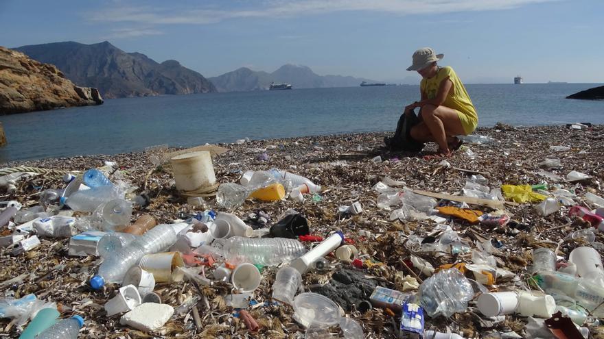 Cala Salitrona plagada de desperdicios y basura / ANSE