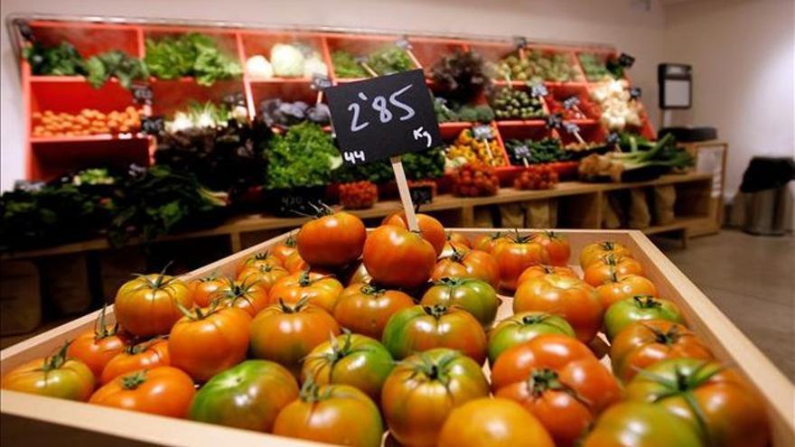 Tomates procedentes de una explotación de agricultura ecológica.