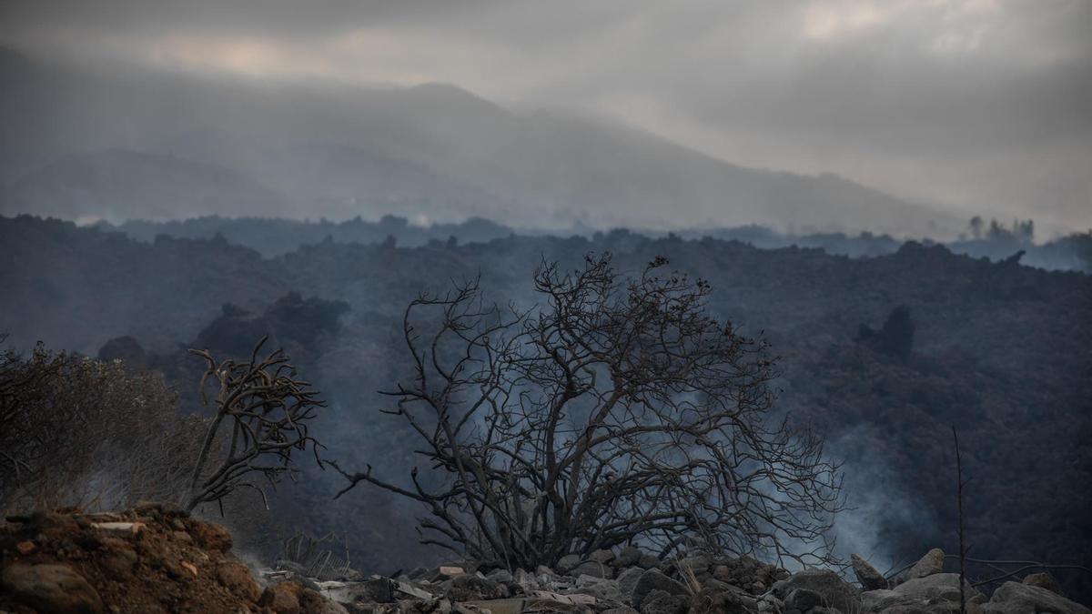 Vista general del volcán desde el núcleo urbano de Todoque.  Kike Rincón/ Europa Press