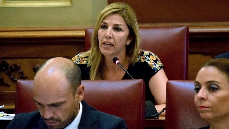 Yolanda Moliné, concejala de Patrimonio Histórico en la capital tinerfeña, en el pleno de Santa Cruz