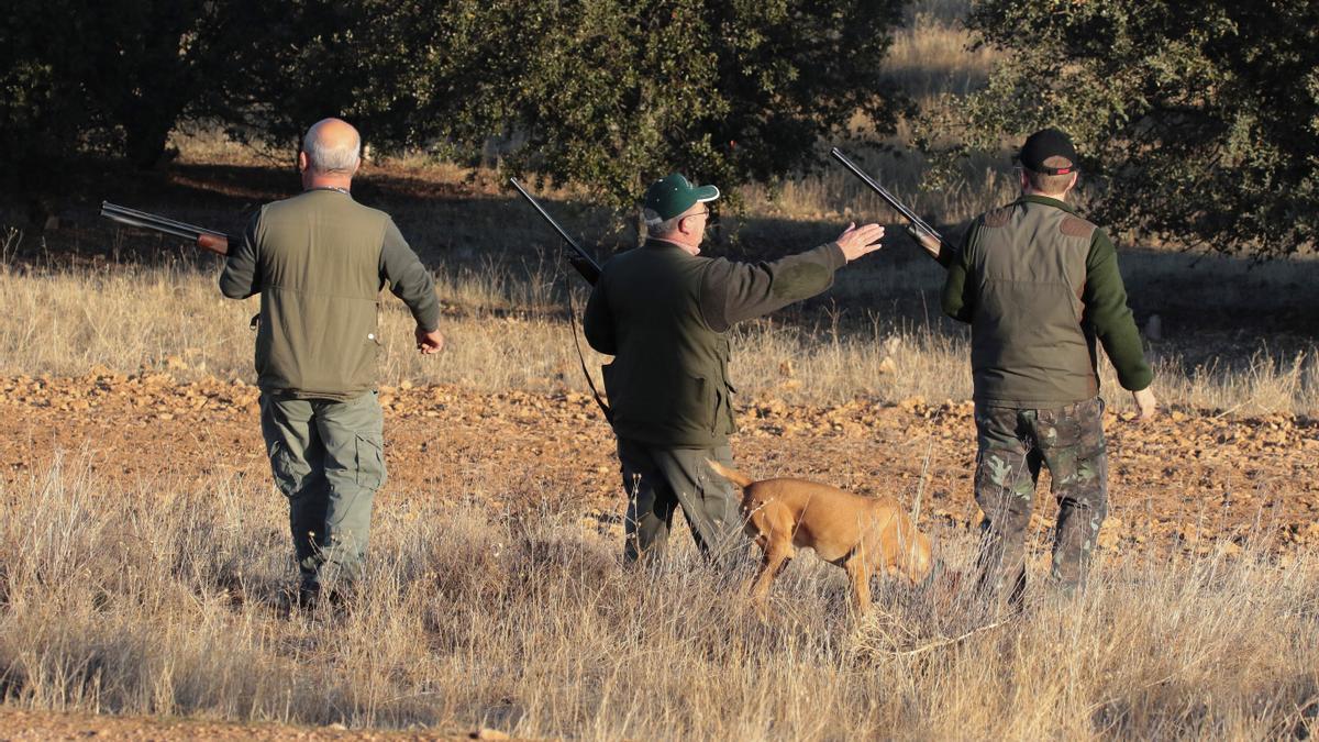 Varios cazadores en un coto de la localidad de Pedrabuena.