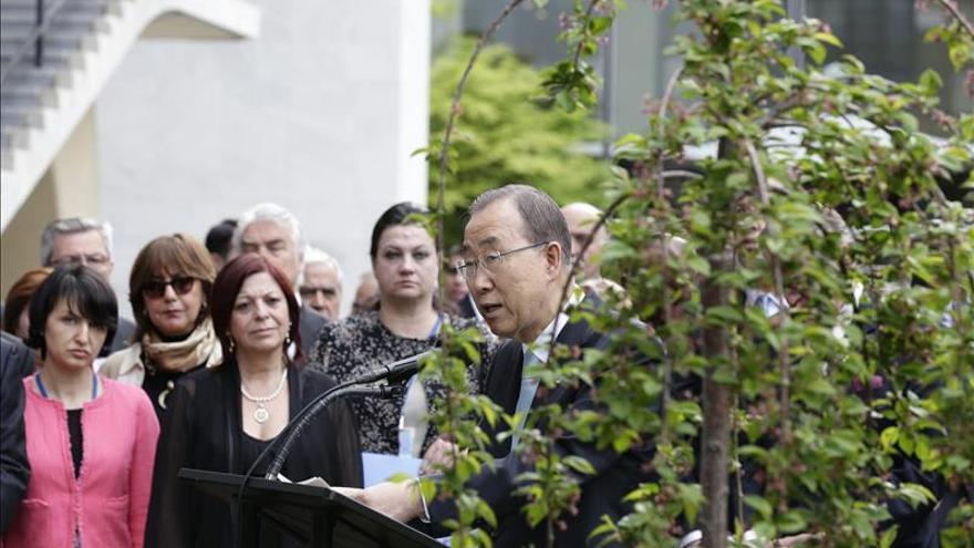 La ONU recuerda el fin de la II Guerra Mundial con un árbol símbolo de la paz