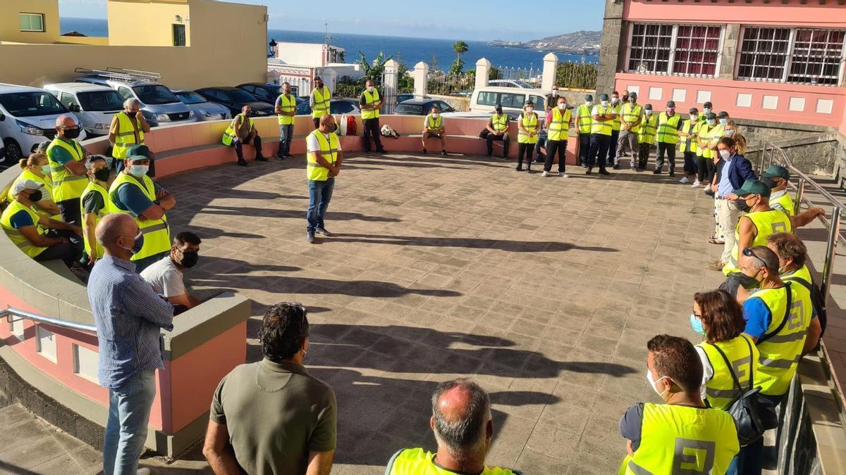 El Cabildo de La Palma refuerza la contratación de personal para el control de la planta invasora  'rabo de gato' en la Isla.