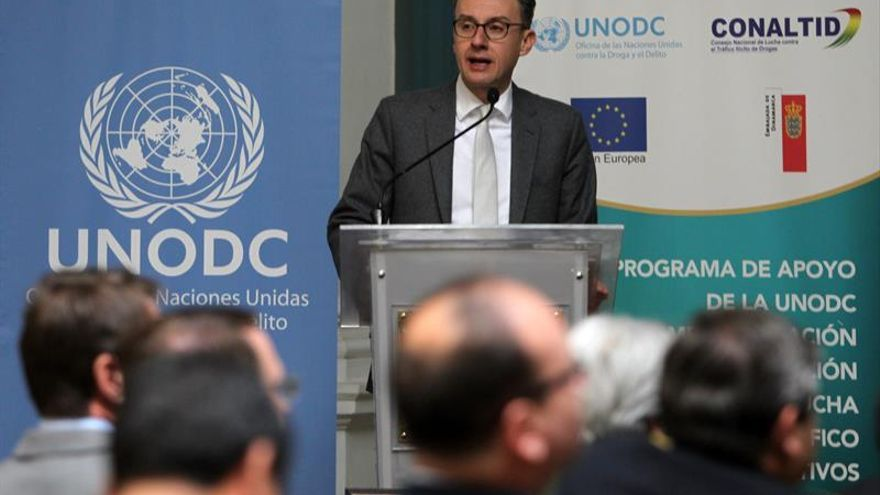 La ONU certifica una leve reducción de los cultivos de coca en Bolivia