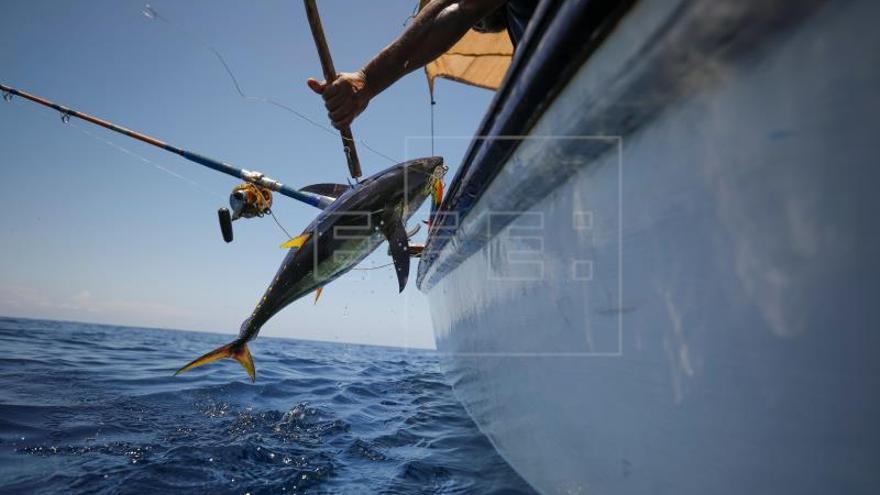 La Eurocámara amplía por cuatro años más el acuerdo pesquero de UE con Mauricio