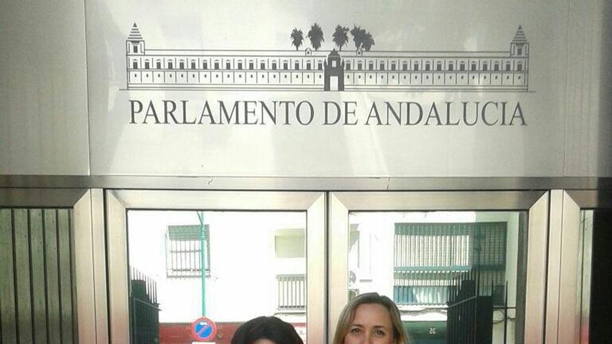 EQUO aprueba por más del 70% concurrir a las próximas elecciones autonómicas con 'Adelante Andalucía'