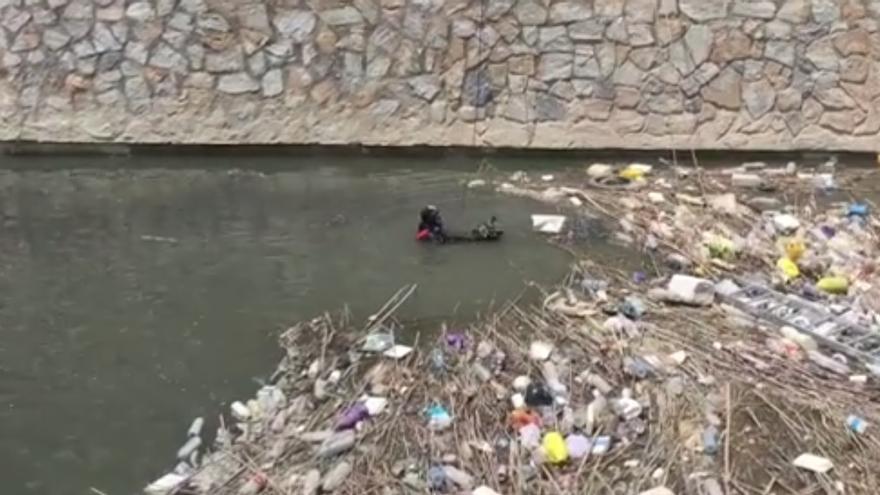Los bomberos rescatan a un patito atrapado en el rio Segura a su paso por Orihuela.