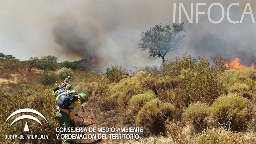 Una veintena de bomberos trabaja para extinguir el incendio forestal de El Castillo de las Guardas