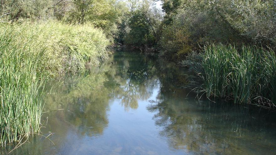Finca de Soto de la Heredad de la Torre de Algete. / Ecologistas en Acción.