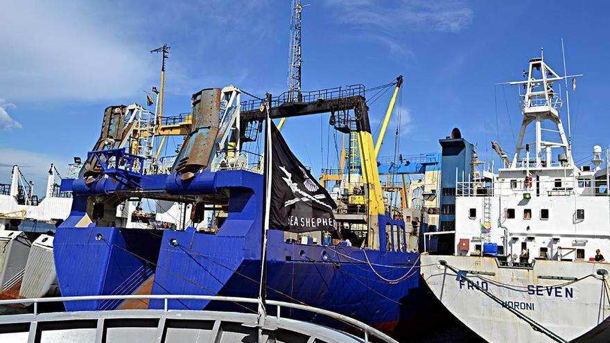 Navío de 'Sea Sheperd' atracado en el puerto de Las Palmas de Gran Canaria.