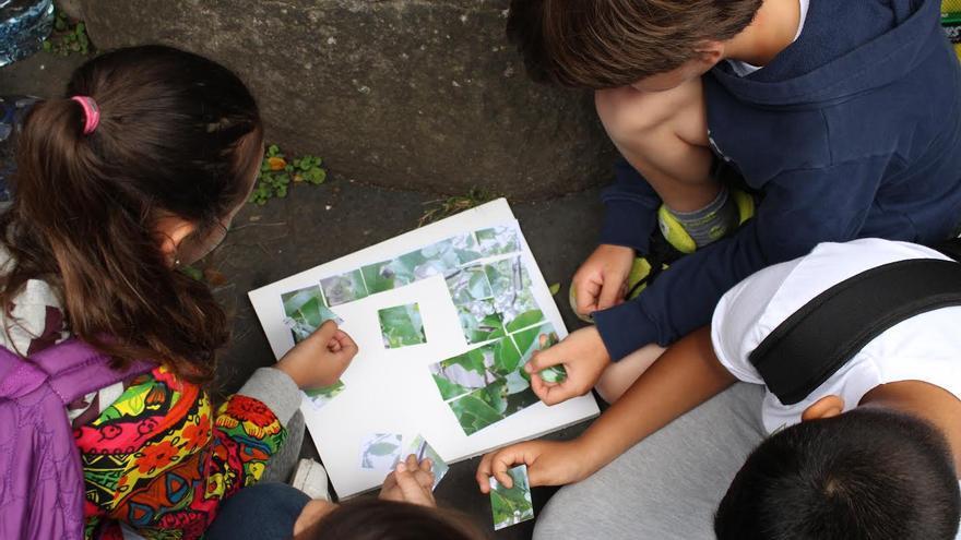 Alumnos participan en el concurso 'Árbol-app'.