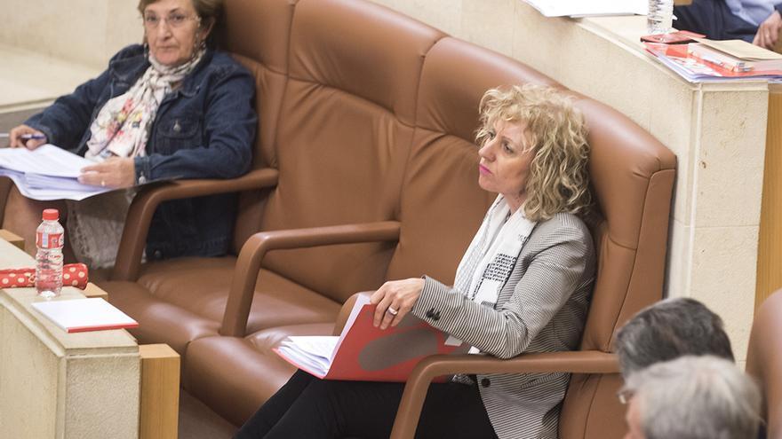Eva Díaz Tezanos en el Parlamento de Cantabria. | JOAQUÍN GÓMEZ SASTRE
