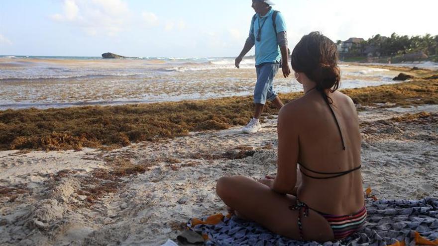 Playa de Tulum, entre las más afectadas por la llegada de sargazo al Caribe mexicano