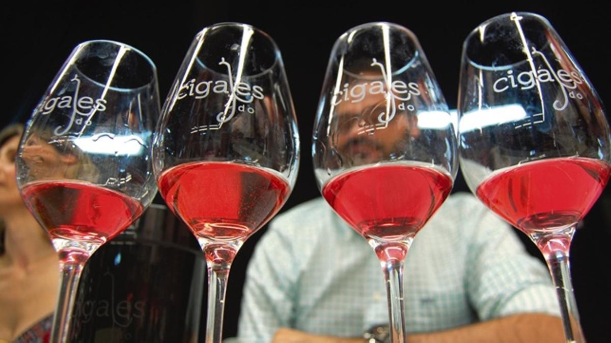 Copas de claretes y rosados de la DO Cigales