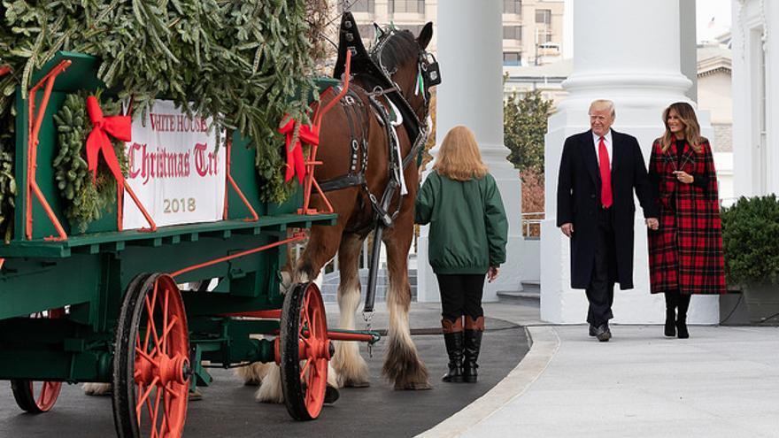 Donald y Melania Trump reciben en diciembre el árbol de Navidad instalado en la Casa Blanca.
