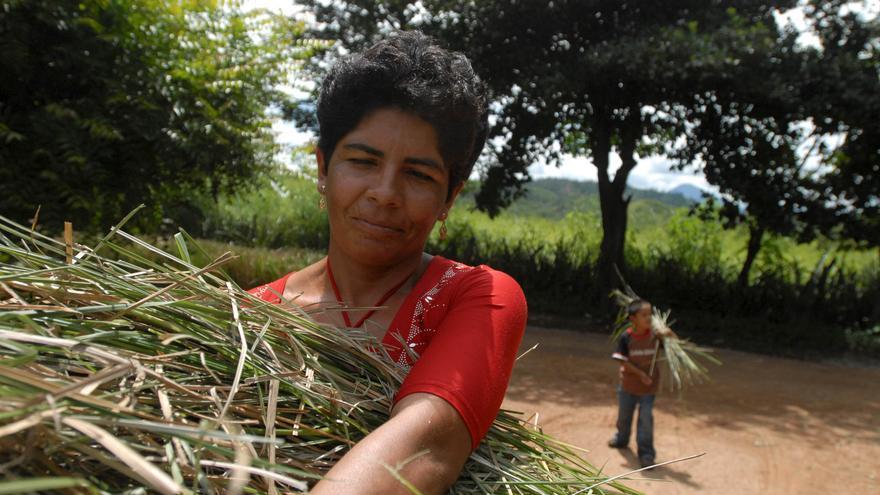 Carmen y su hijo viven en El Fraile, Totogalpa. Su día a día se centra en la agricultura de autoconsumo para toda su familia. Foto: Leo Liberman/Action Aid