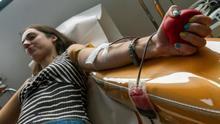 La donación de sangre en Mallorca, una experiencia 3.0