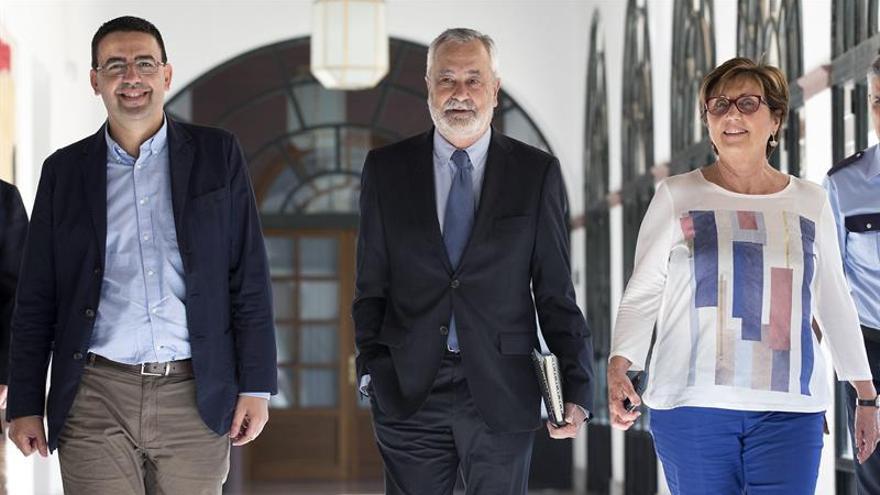 Griñán: Si hubo deficiencias no fueron de la Administración, sino contra ella