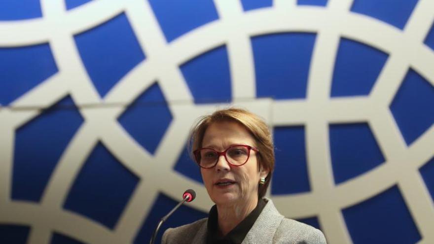 """Ministra afirma que la UE mantiene una """"campaña"""" contra el agro brasileño"""