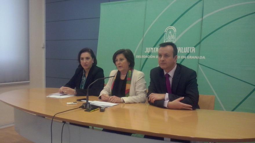 """Junta garantiza que seguirá """"defendiendo"""" la Ley de Dependencia pese a las """"continuas trabas"""" del Gobierno central"""