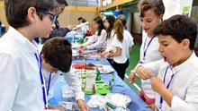 """Hasta 60 centros educativos podrán participar en un proyecto """"pionero"""" de formación técnico-científica"""
