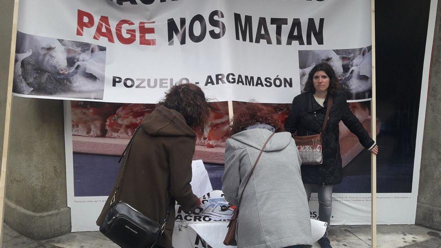 Recogiendo firmas, el pasado mes de marzo, en la capital. FOTO: Lourdes Cifuentes.