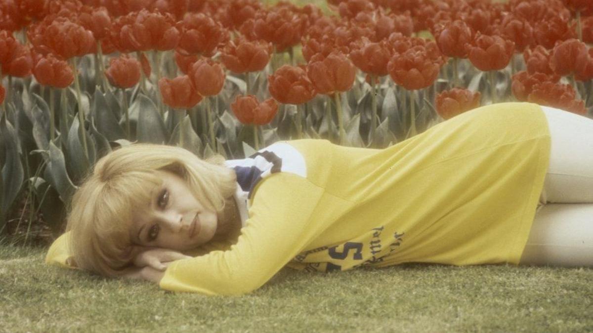 Raffaella Carrà, una flor de loto creando belleza desde la raíz vertebral del siglo: sus pasiones.