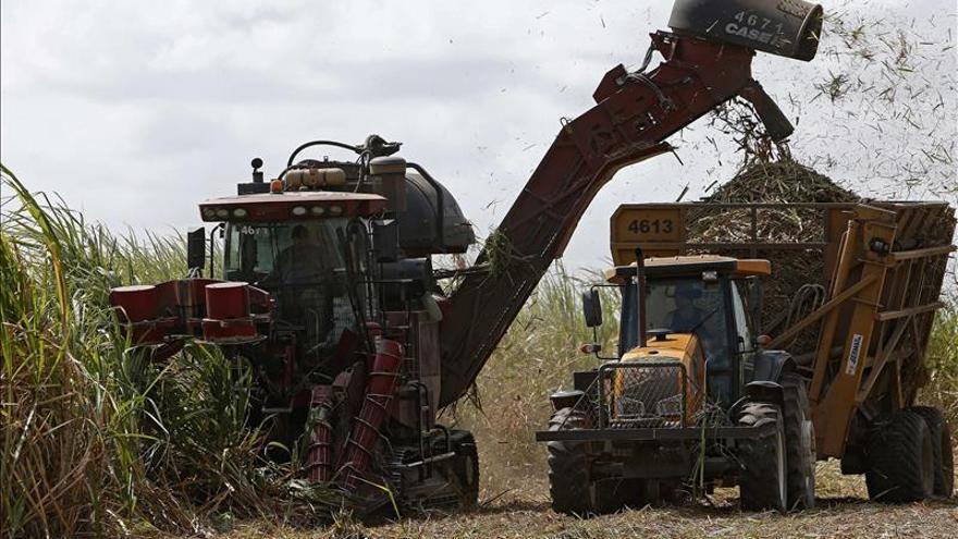La cosecha brasileña de granos se reducirá en 2016 tras el récord de este año