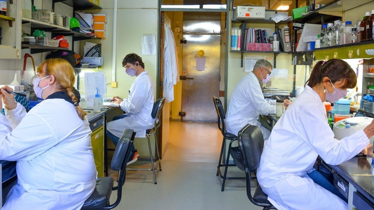El Gobierno incorpora a 1.000 científicos del CONICET a organismos estatales