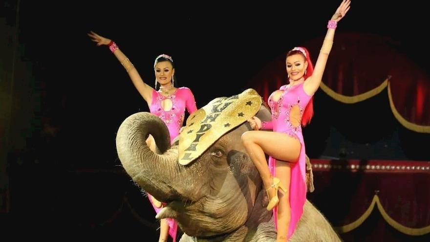 Imagen de archivo del Circo Quirós
