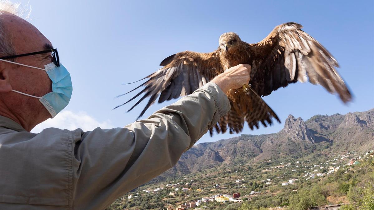 El pequeño Lázaro ha vuelto a volar este miércoles