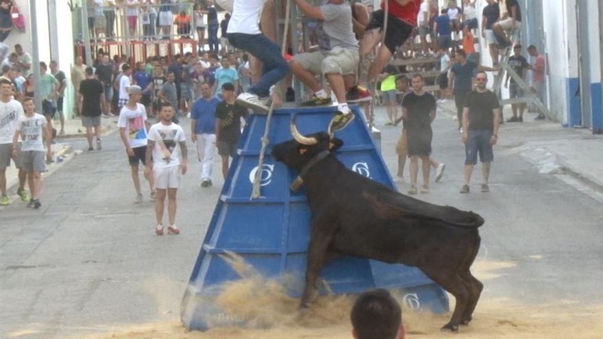 Un festejo de 'bous al carrer' en la localidad de Paiporta