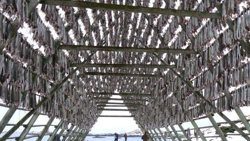 Los secaderos de bacalao son uno de los elementos omnipresentes en los paisajes isleños. EFE