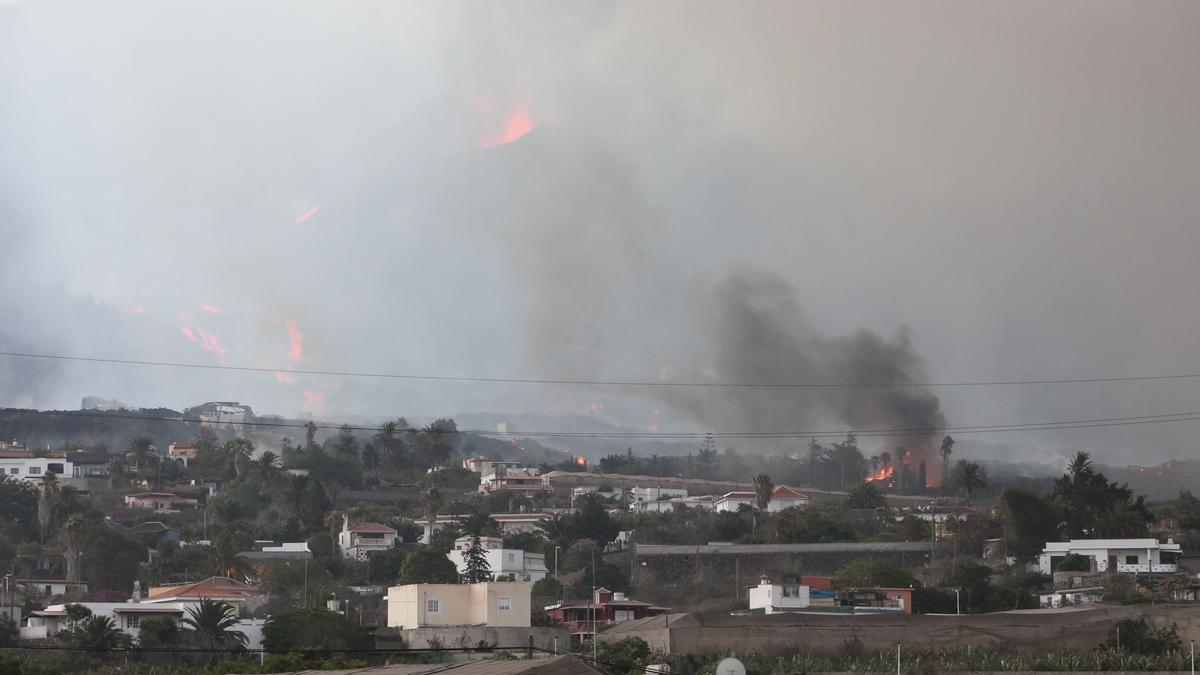 Avance de la lava y vistas del volcán desde La Laguna. / FOTO: ALEJANDRO RAMOS