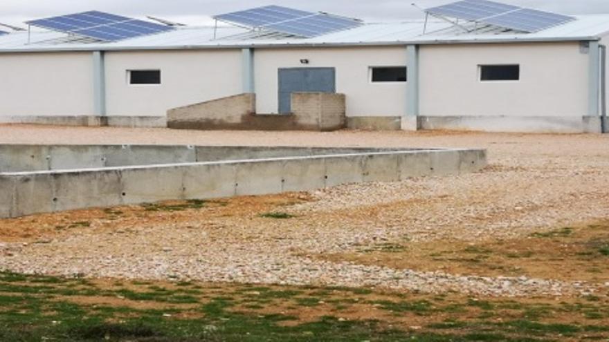 """Granja porcina """"de investigación"""" en Almendros (Cuenca)"""