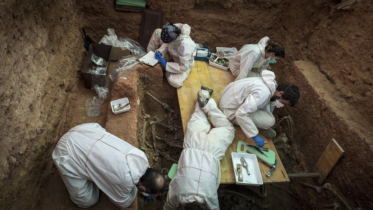 Trabajos de exhumación en una fosa de Paterna.