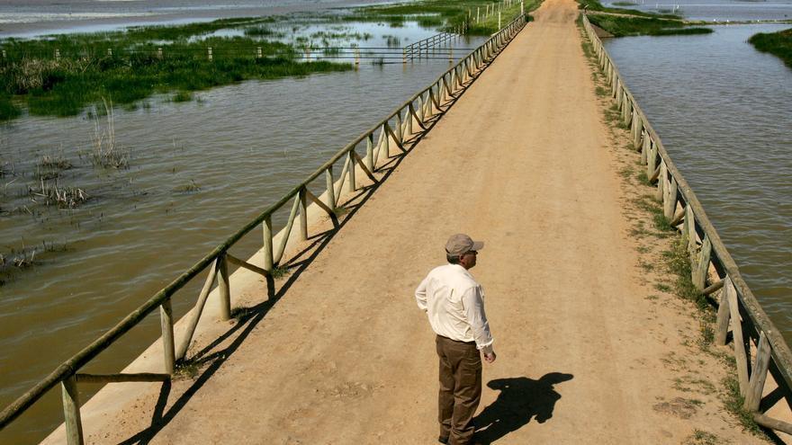 La Unesco hace 15 recomendaciones a España por el estado de Doñana, según WWF