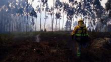 Un bombero forestal de la Brif de Laza, trabajando en la extinción del incendio de Dodro y Rianxo
