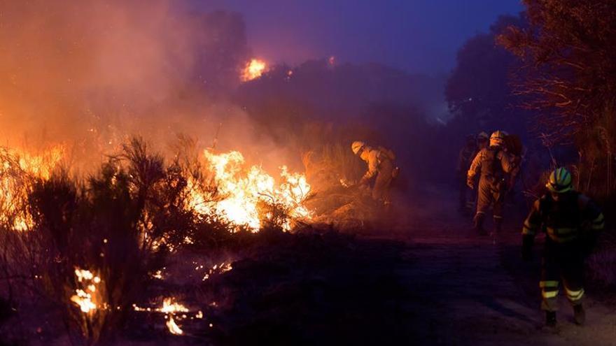 INFOCA mantiene toda la noche 80 bomberos en incendio La Granada (Huelva)